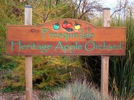 Heritage-Apple-Orchard